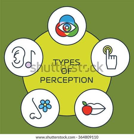 Five Senses: Facts