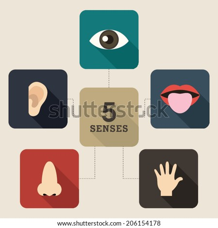 Five Senses Icon. Mind map style. - stock vector