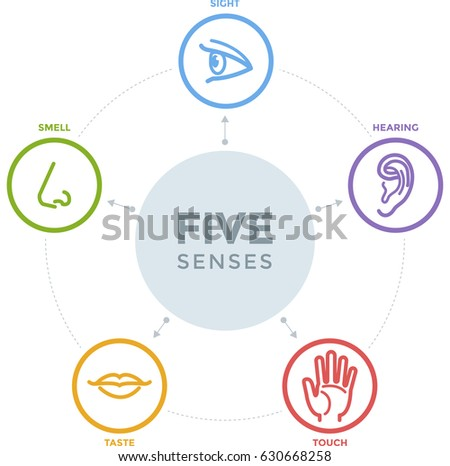 Five senses stock images royalty free images vectors for 5 senses in architecture