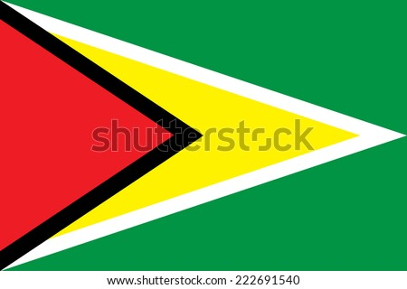 Flag of Guyana - stock vector