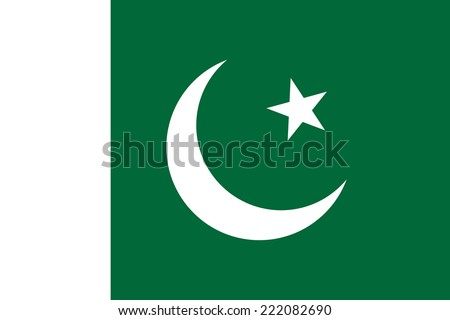 Flag of Pakistan - stock vector
