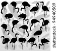 Flamingo bird silhouettes and feathers illustration collection background vector - stock vector