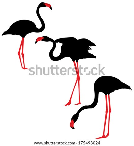 Flamingo  black and red vector Silhouettes - stock vector