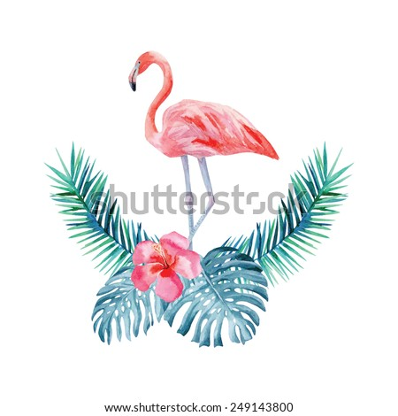 flamant rose stock photos images pictures shutterstock. Black Bedroom Furniture Sets. Home Design Ideas