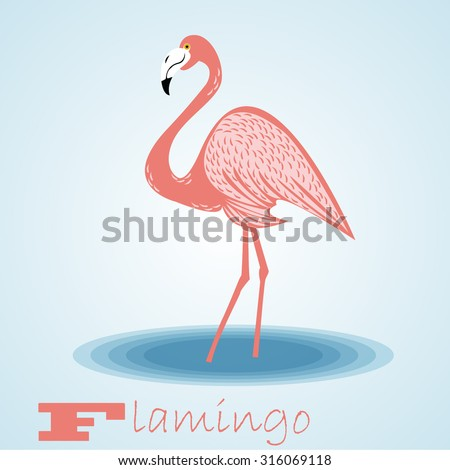 Flamingo.Vector - stock vector