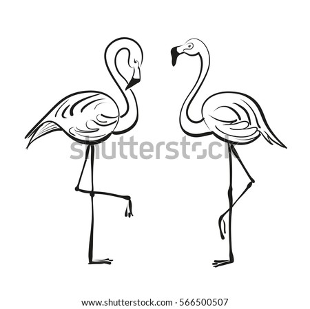 Outline-flamingo-bird Stock Images, Royalty-Free Images ... Flamingo Outline