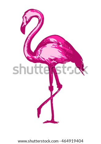 set watercolor flamingos isolated on white stock vector 567528727 shutterstock. Black Bedroom Furniture Sets. Home Design Ideas