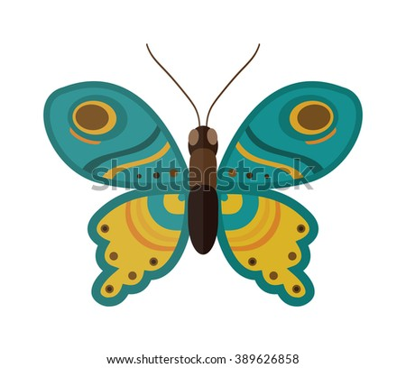 Flat butterfly vector. Flat butterfly isolated on white background. Flat butterfly vector illustration. Colored flat butterfly isolated on white background. - stock vector