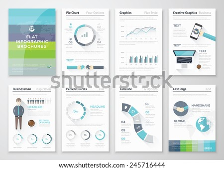 Infographic Flyer Brochure Elements Business Data Stock Vector