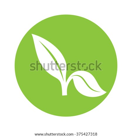 Flat Leaves Icons. Vector Leaf Icon  - stock vector