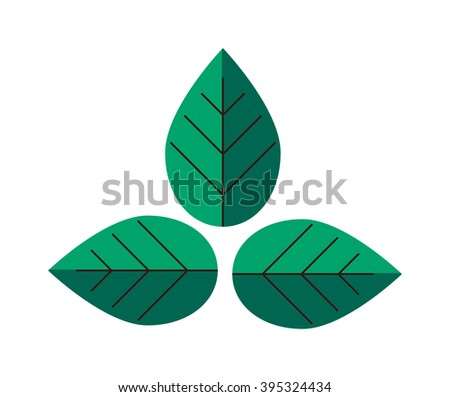 Flat leaves natural organic fresh element and flat leaves spring tree symbol. Flat leaves nature plant. Flat leaves herb element. Leaves green design. Flat leaves green plant eco vector illustration. - stock vector