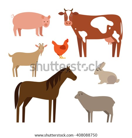 flat pets on a white background - stock vector