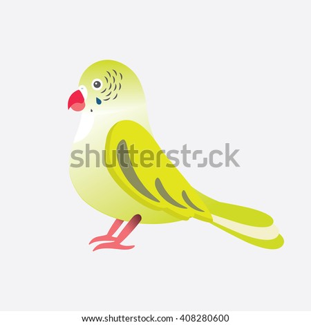 Flat vector illustration of parrot Parakeet bird. Cartoon festive element for design, object isolated on white black  background. Green, yellow, pink, red colors 
