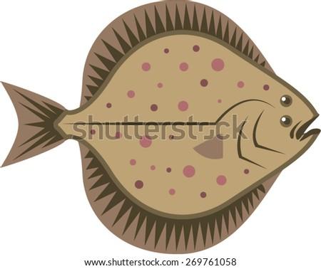 Flatfish - stock vector