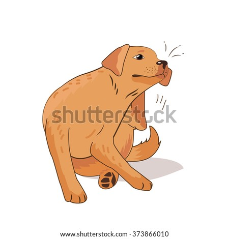 Flea Infested Dog. Scratch The Flea Bugs. Vector Illustration On A White Background. Flea Bugs Life. Bugs Bites. Bugs Pictures. Flea Bugs On Animals. Flea Bug Bite Symptoms. Drain Flea Bugs. Ill Dog. - stock vector