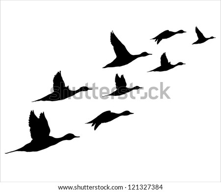 Flock flying to the sun - stock vector