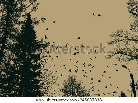 flock of birds and silhouettes of trees. vector illustration. - stock vector
