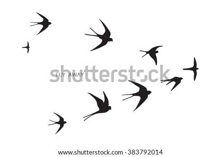 flock of birds silhouette swallow - stock vector