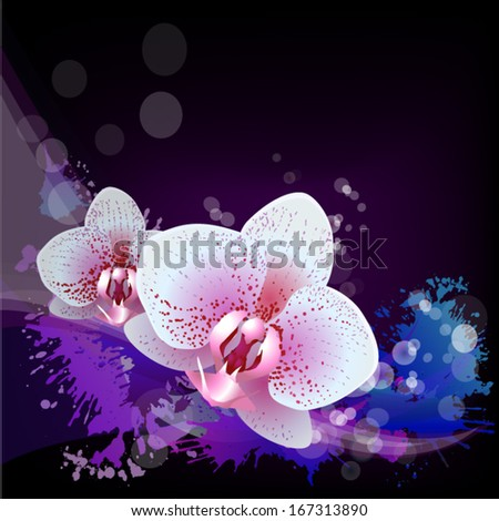 Floral abstraction with orchid on a dark background. Vector - stock vector