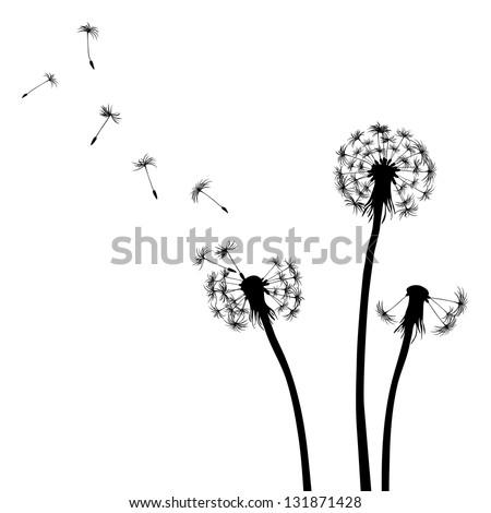 Floral background, dandelion - stock vector