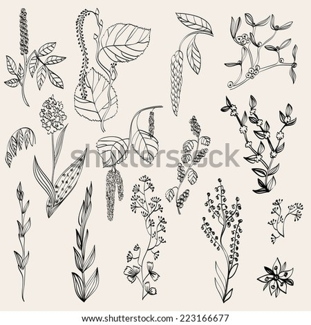 Floral background. Set realistic plants and branches