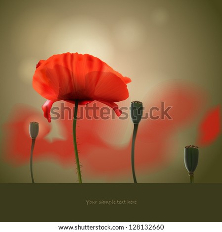 Floral background with poppy on the abstract background - stock vector