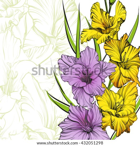 floral blooming gladiolus hand drawn vector illustration sketch. Group of flowers. Floral background with gladiolus isolated on white background.