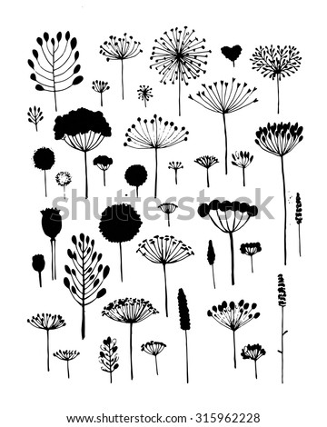Floral collection, sketch fro your design. Vector illustration - stock vector