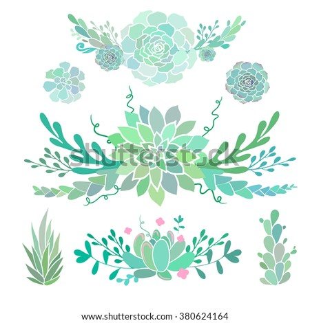 floral compositions with succulents, vector floral decorative borders, vector decorations with succulent plants and flowers, isolated on white - stock vector