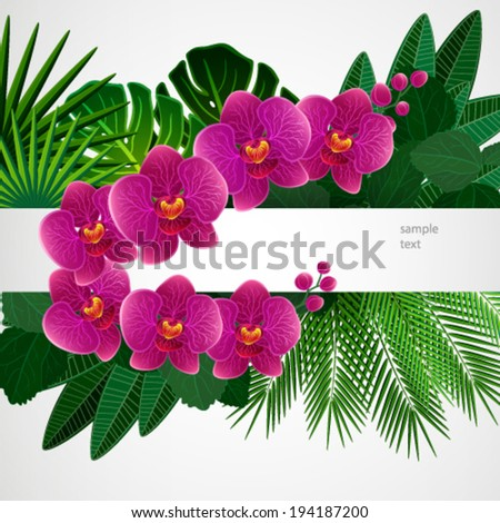 Floral design background. Orchid flowers. - stock vector