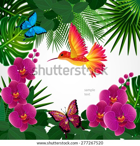 Floral design background. Orchid flowers with bird, butterflies. - stock vector