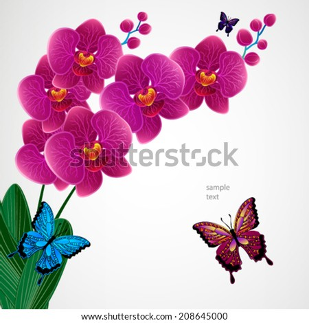 Floral design background. Orchid flowers with butterflies. - stock vector