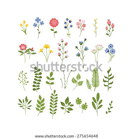 Floral Hand Drawn Herbarium Collection. Flowers, Berries and Leaves Vector Set. Summer Blossom Illustration for Cards, Greetings, Banners, Valentines Day, Birthday Cards, Invitations or Web. - stock vector