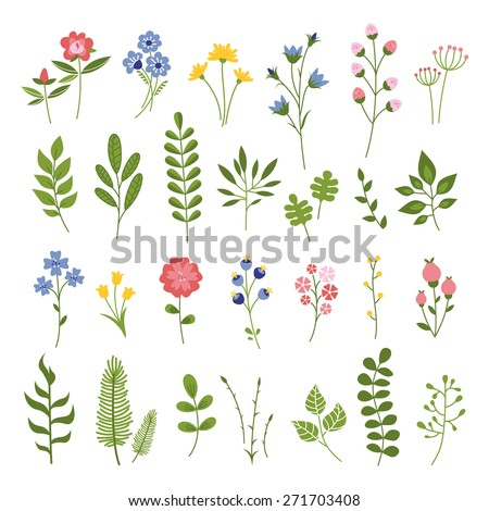 Floral Hand Drawn Vector Set. Flowers and Leaves Collection. Summer Blossom Illustration for Cards, Greetings, Banners,  Mothers Day, Valentines Day, Birthday Cards, Invitations or Web. - stock vector
