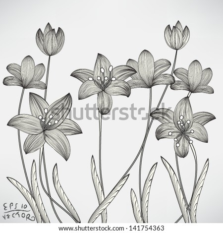 Floral Lily Elements for design, EPS10 Vector background