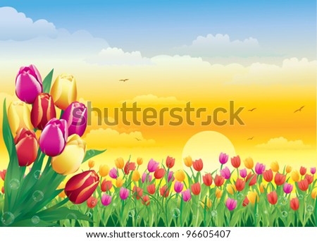Floral meadow. with bunch of Tulips - stock vector