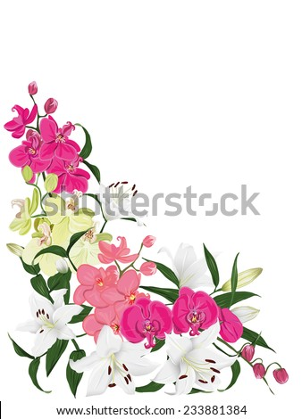 Floral ornament vector card Wedding background in bright colors - stock vector
