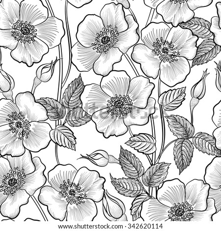 Floral seamless outline sketch pattern. Flower background. Floral tile spring texture with flowers Ornamental flourish garden cover for card design - stock vector
