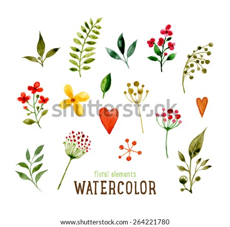 Floral Set with Watercolor Flowers for Summer or Spring Cards, Invitations, Flyers, Banners or Posters Design. Aquarelle Flowers and Leaves Collection for Greeting and Wedding Cards - stock vector