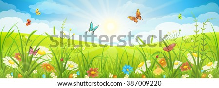 Floral summer or spring landscape, meadow with flowers, blue sky and butterflies - stock vector