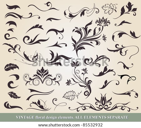 Floral vector design elements and decoration.  All elements separate - stock vector