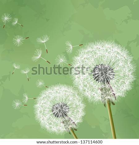 Floral vintage background green with two flowers dandelions.Vector illustration - stock vector