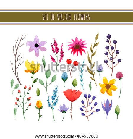 Floral watercolor collection with leaves and flowers. Wedding, romantic collection.Spring or summer design for invitation, wedding or greeting cards. Vector illustration