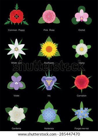 Flower collection, no gradients - stock vector