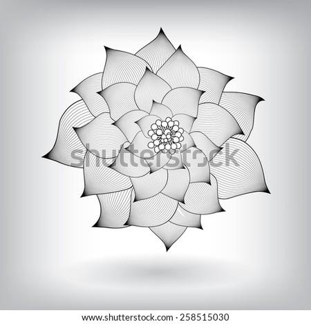 Flower Elements for design, EPS10 Vector background - stock vector