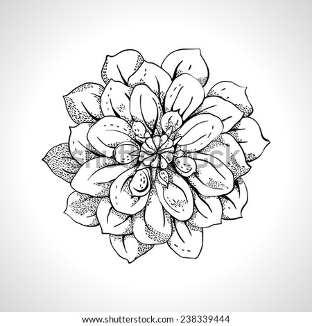 Flower monochrome Line Art - stock vector
