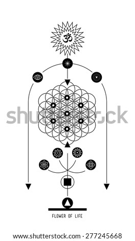 Flower of life. Buddhist Hindu tantric symbol  harmony and balance cosmos and the universe. Used in the design tattoo typography logos badges corporate identity  poster yoga Ayurvedic - stock vector