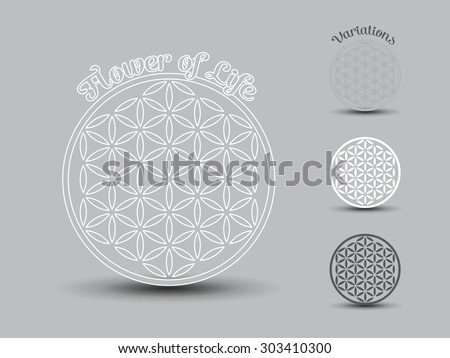 Flower of Life symbol, set of - stock vector