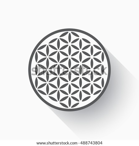 Flower of life vector, flat design