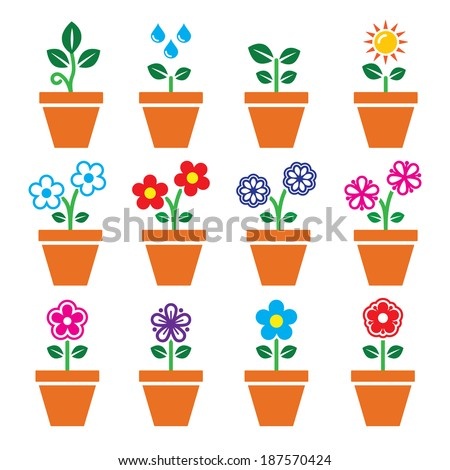 Flower, plant in pot vector colorful icons set